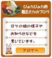 ぴょんぴょん畑ブログ